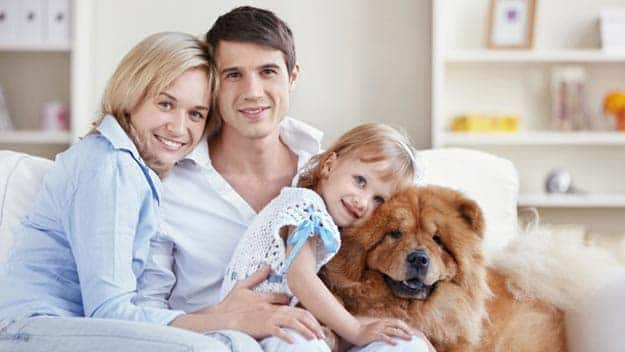 Wills & Trusts dog-young-family Direct Wills Chiswick